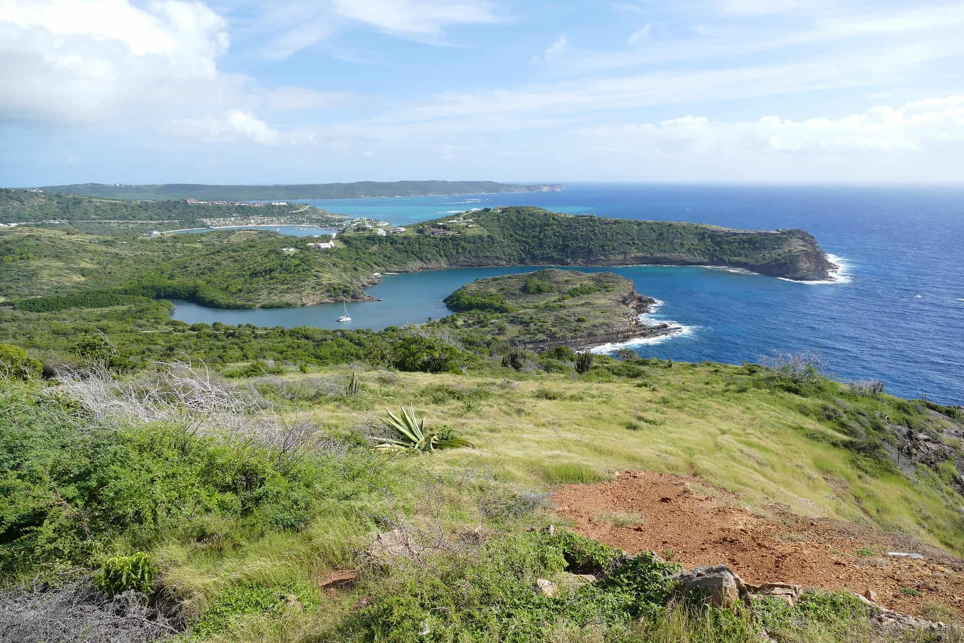 St John's, Antigua Safari